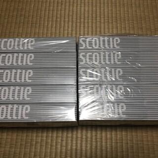 scottie スコッティティッシュ 10箱