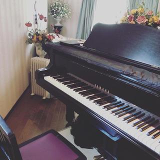 無料お試しレッスン ピアノ教室