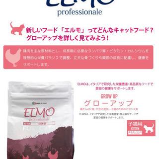 子ねこ用キャットフード(ELMO、ピュリナワン) - 文京区