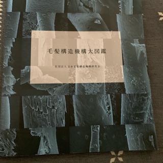 美容師の定価1万円図鑑