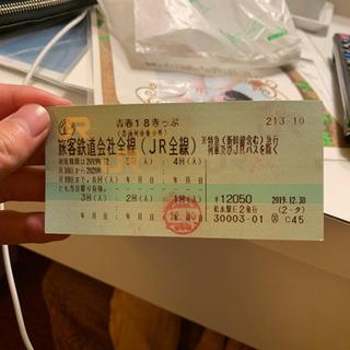 青春18切符 2回分 5000円