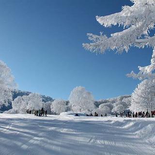 野沢温泉スキー場 スノーボード仲間募集