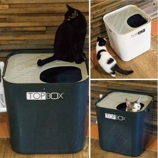 猫トイレ 大型