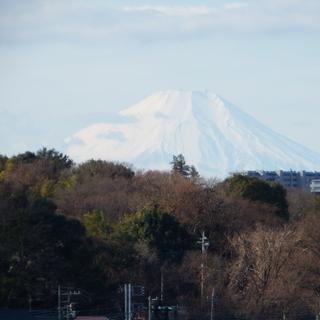 富士山ビューの四角形で使い勝手の良い事務所・店舗・倉庫出ました!