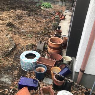 敷石、植木鉢