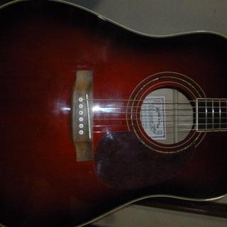セピアクルーアコースティックギターW-170-WRS