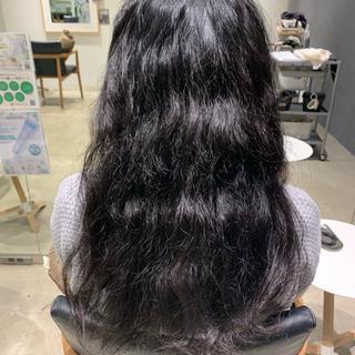 急募!1/15髪質改善ストレートモデル募集!