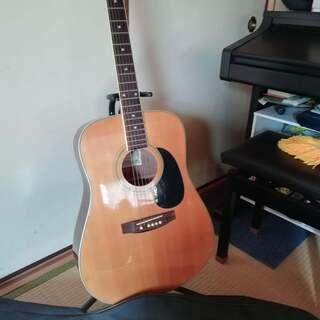 zenon,ギター