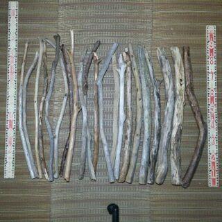 薪、インテリア用 80cm流木 20本