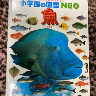 📓魚 小学館の図鑑NEO4📓 (児童書)
