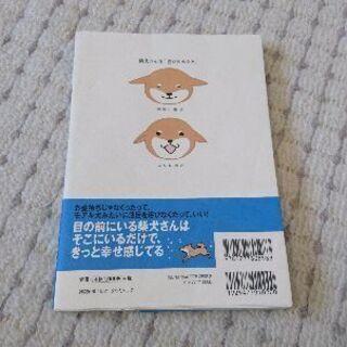 三たび 柴犬さんのツボ - 京都市