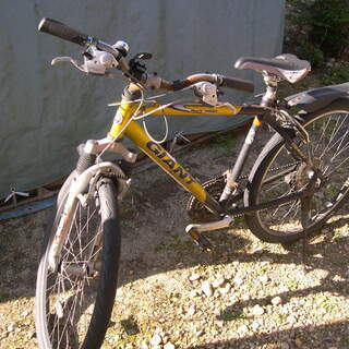 GIANT 自転車