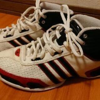 【Adidasバスケットシューズ】