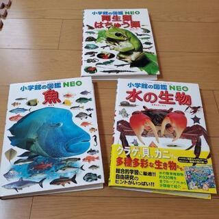 【新品】小学館の図鑑  NEO 3冊セット