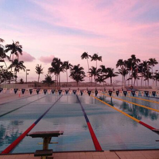 水泳個人指導