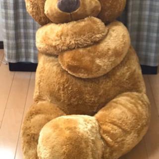クマの大きいぬいぐるみ