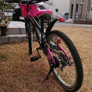 22インチ女の子自転車