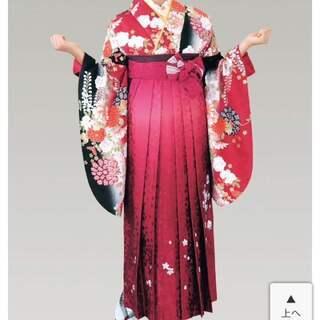 二尺袖人気のH.L 刺繍袴 着物・袴・帯・伊逹衿 4点セット
