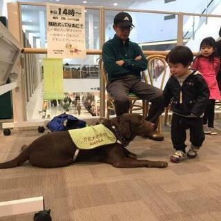 犬のしつけ方セミナー - イベント