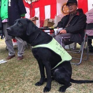 犬のしつけ方セミナー − 神奈川県