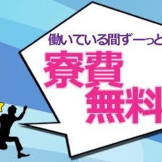 【即日対応OK】祝い金20万円(5万円×4か月連続)支給!!生活...