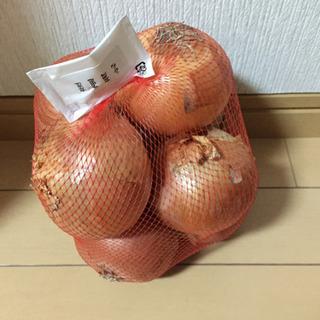玉葱 北海道産 8玉入り