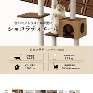 猫タワー キャットタワー 美品