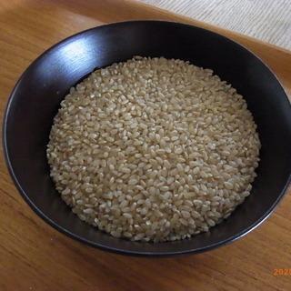 無農薬・無化学肥料・天日干し栽培の「コシヒカリ」+米ぬか