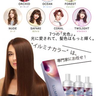 Hair+Make anyhow [店舗紹介&求人情報]