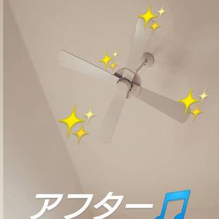 マイホーム修理 ⑯ 高所のお掃除(メールにてサポート)📱080-...