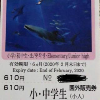 沖縄美ら海水族館 チケット  小・中学生 1枚  未使用 お譲り...