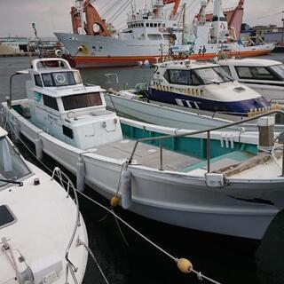 北九州市、若松区沖での船釣りメンバー募集中です😁
