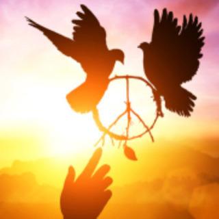 世界の平和について考えたい!の画像