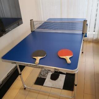 折り畳み 幅80長さ160 卓球台 セット テーブル 卓球 ピン...