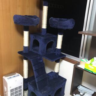 キャットタワー(決まりました!)