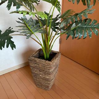 観葉植物 フェイク フェイクグリーン