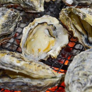 牡蠣・海鮮 食ツーリング🤤🦐🐟