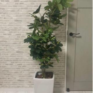 人工観葉植物 フェイクグリーン 観葉植物 大型 SC触媒