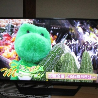 最終値下げ 4K液晶テレビ43インチ