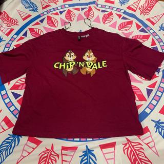 チップとデール Tシャツ Sサイズ
