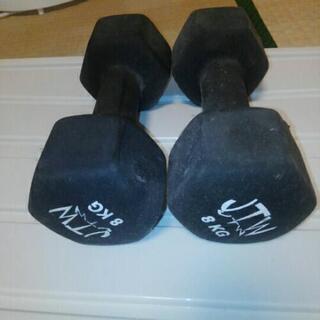 鉄アレイ8kg