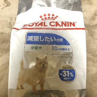 新品・未開封 ロイヤルカナン 減量したい犬用 8kg