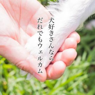 犬好きさんのチャリティ撮影会の画像