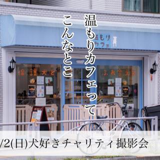 犬好きさんのチャリティ撮影会 - 墨田区