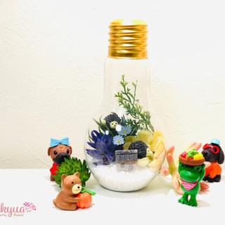 【総武線新小岩駅7分】世話なしアートで作る小さな森ボトル