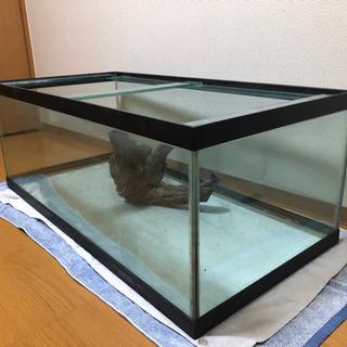 値下げ 120×45×60ガラス水槽 流木 ガラス蓋セット