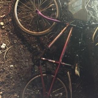子供用 22型自転車 フレーム チェーンが×