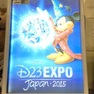 LEDアート D23EXPO ファンタジア