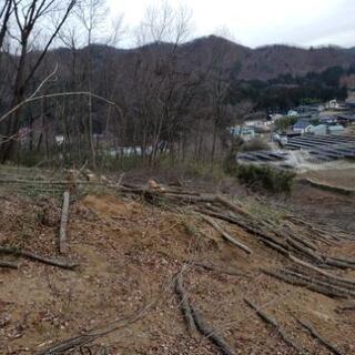 山林 庭木 伐採、草刈り、剪定!! − 栃木県