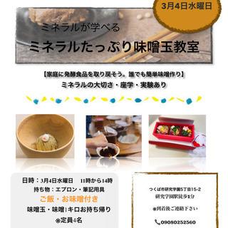 ミネラルたっぷり味噌玉造り+味噌1キロ付き